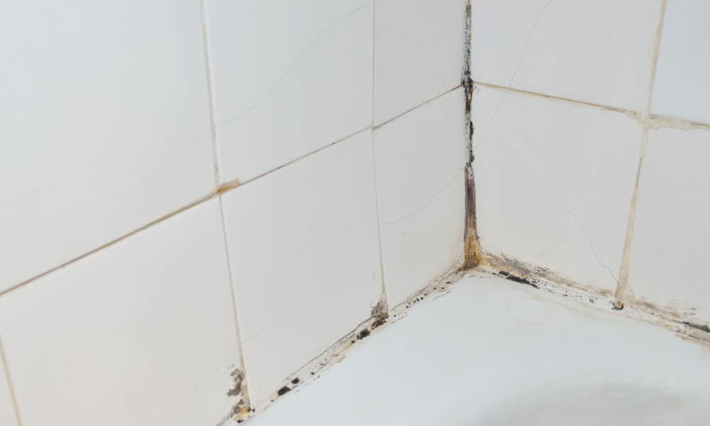 7 tips on how to clean shower tile