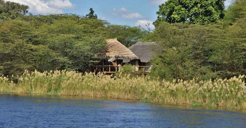 Safari to Botswana, Vic Falls, Kruger & Cape Town