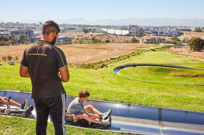 4 Unusual Activities for Kids in Cape Town