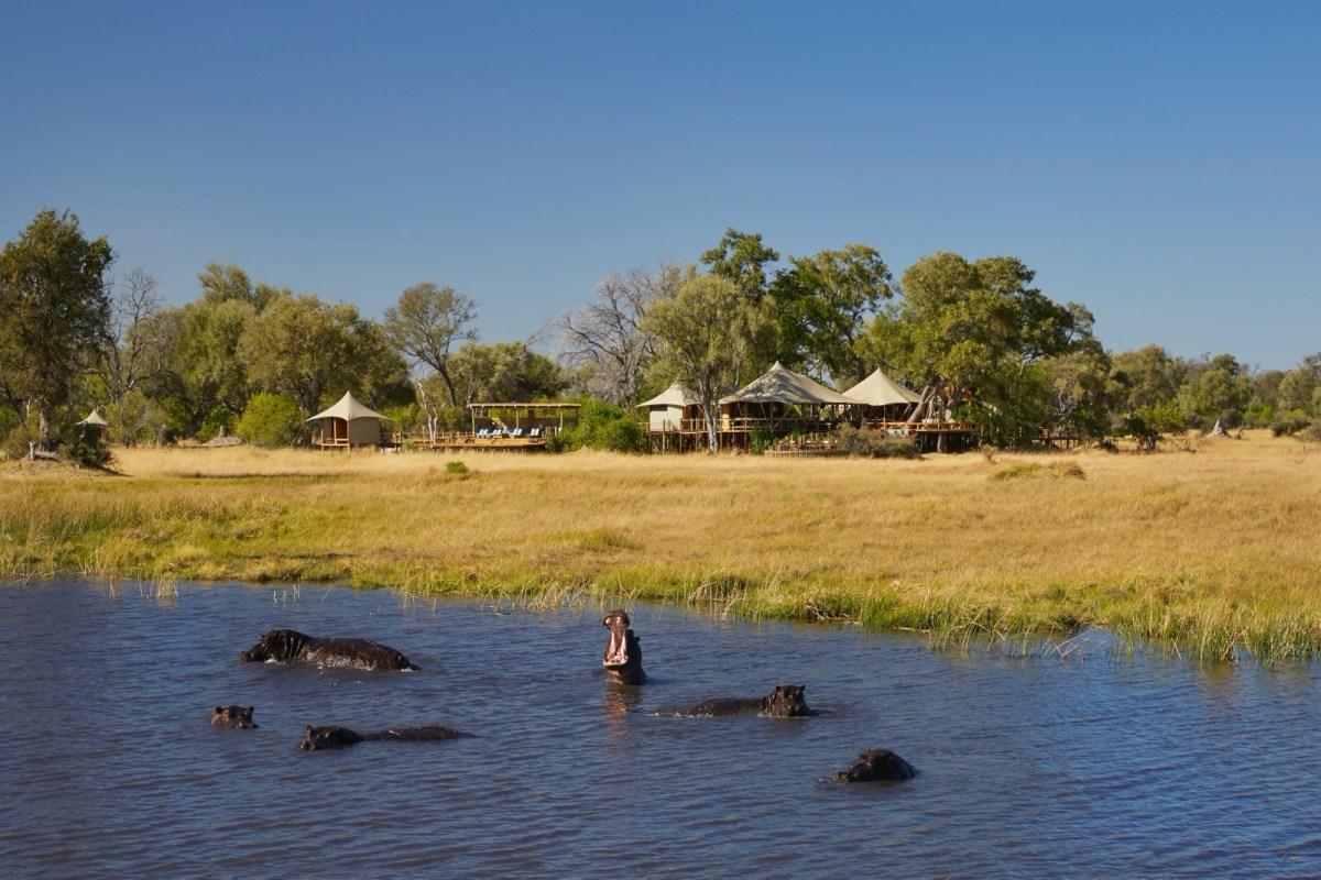 Best safari lodges in Botswana 2020