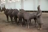 terracotta savaşçı ve atları -8
