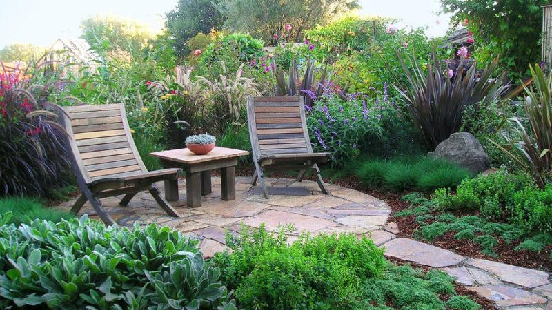 Small Backyard Pond Ideas
