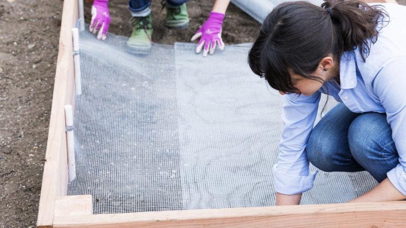 How Build Garden Against Gophers