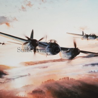 Mosquito Mission Stephen Brown
