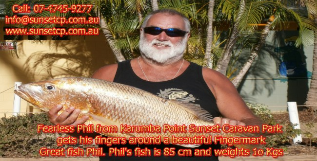 karumba point sunset caravan park accommodation cabins hotels fishing birds wild life queensland qld online direct booking book now