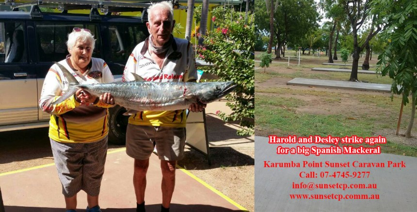 Harold and Desley Strike Again For A Big Spanish Mackeral