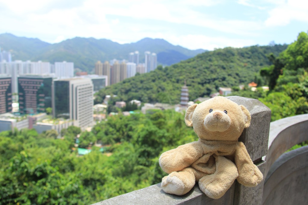 View of Hong Kong's high-rises from the temple.