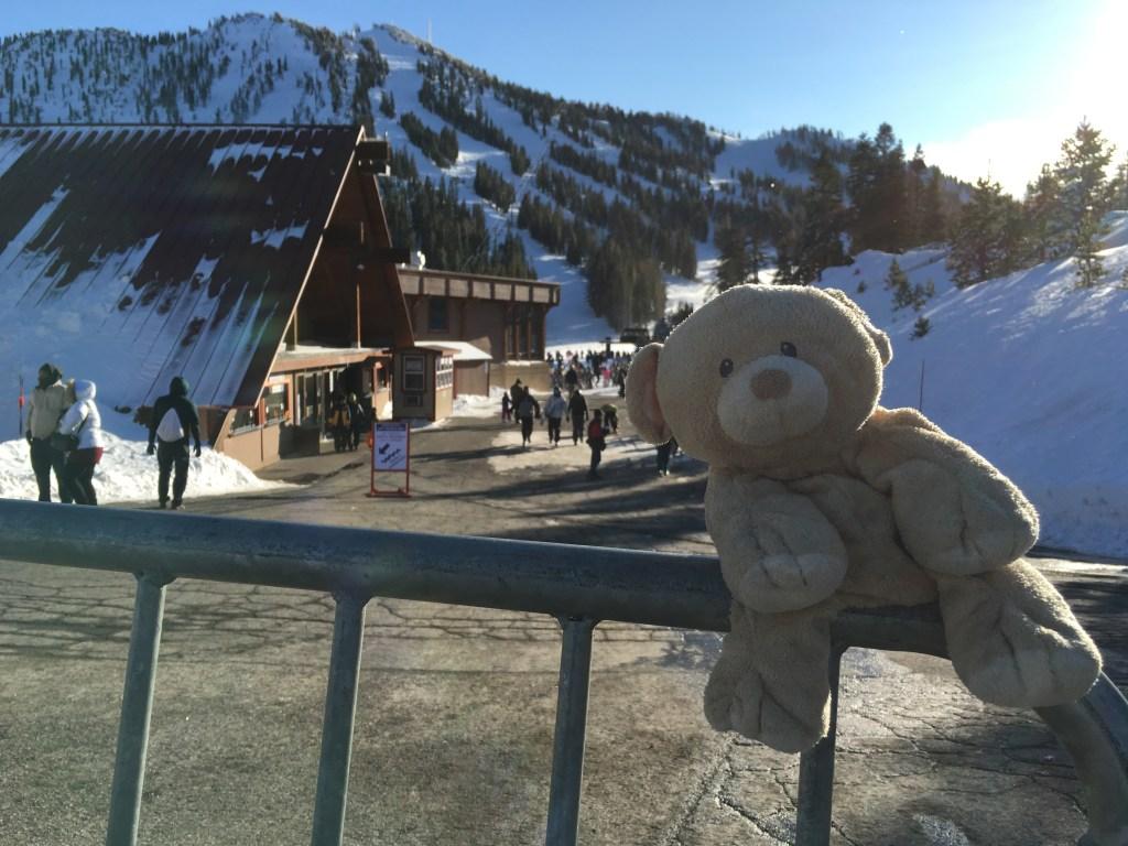 Woody at Mt.Rose Ski Resort.