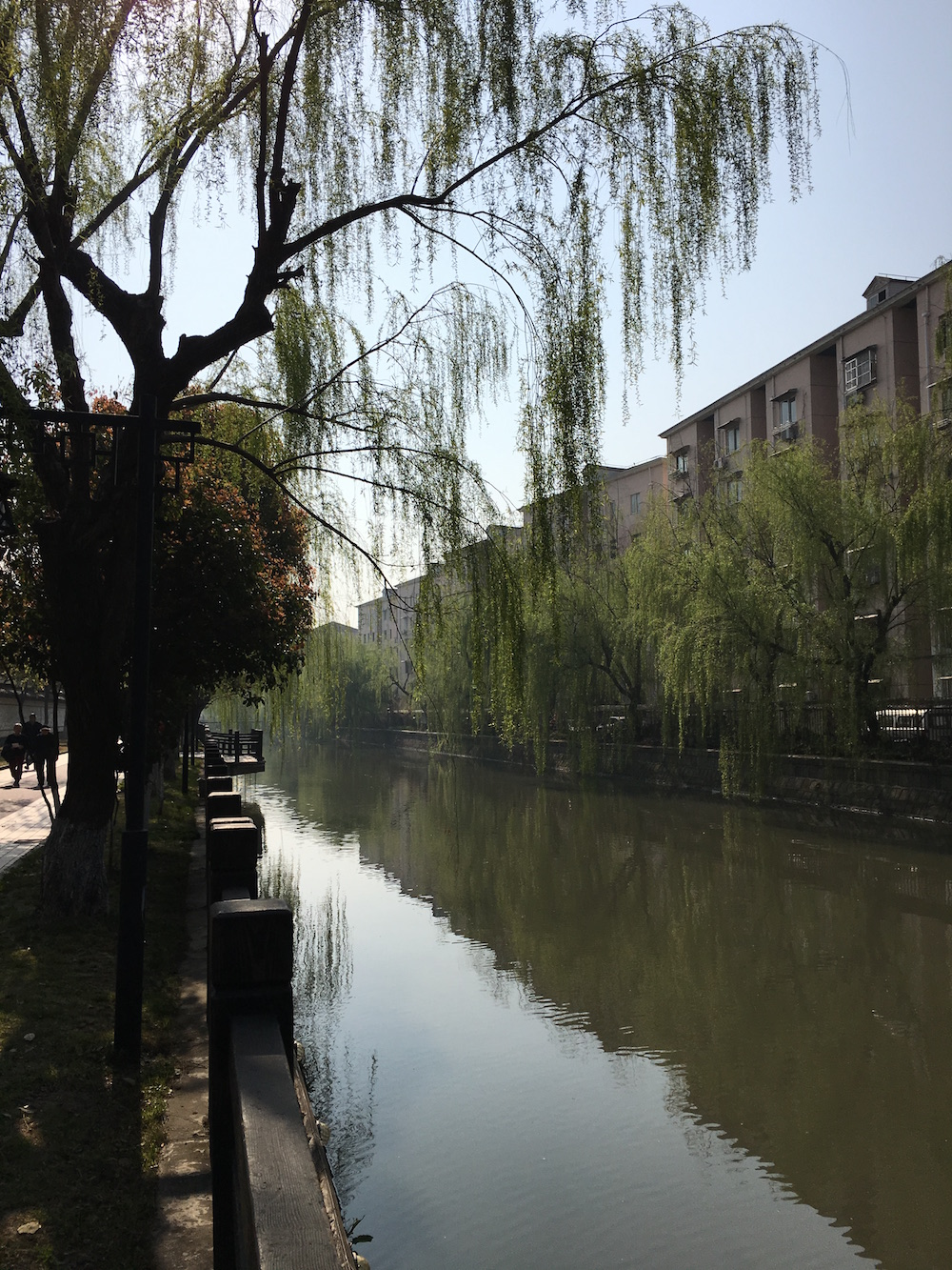While running errands, we walked past a park. There was a river with fisherman fishing along the sides, birds chirping in their cages along the walls, and old people exercising on rusty Asian park gyms.