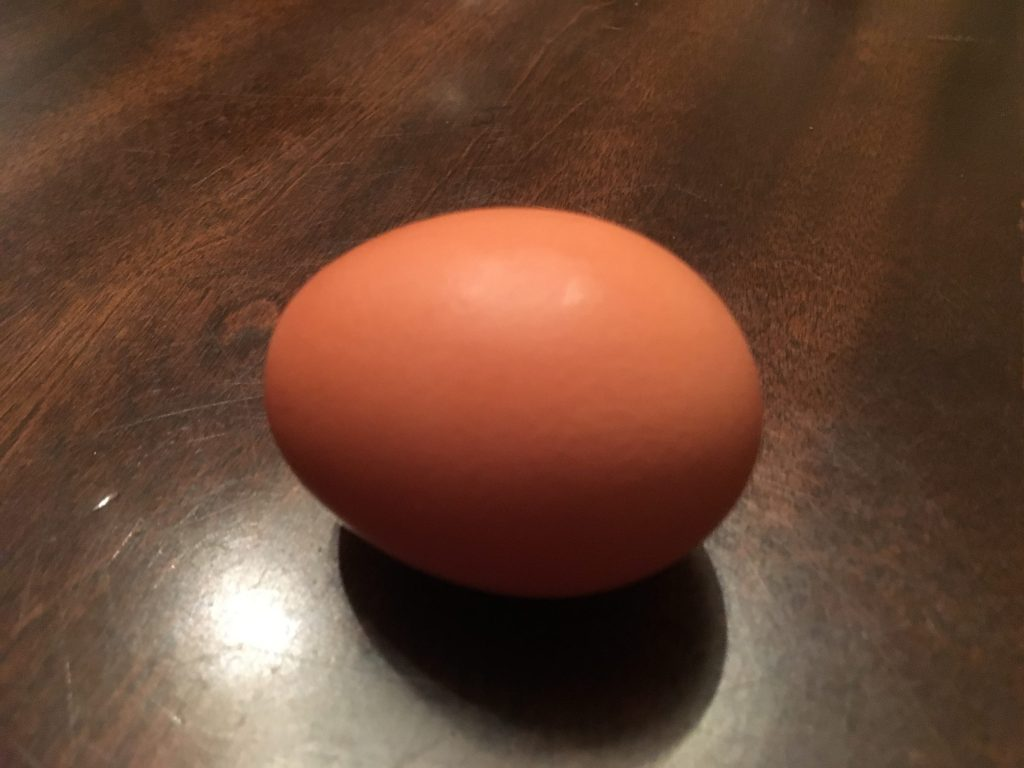 Cooking Wisely : Boiled Eggspert