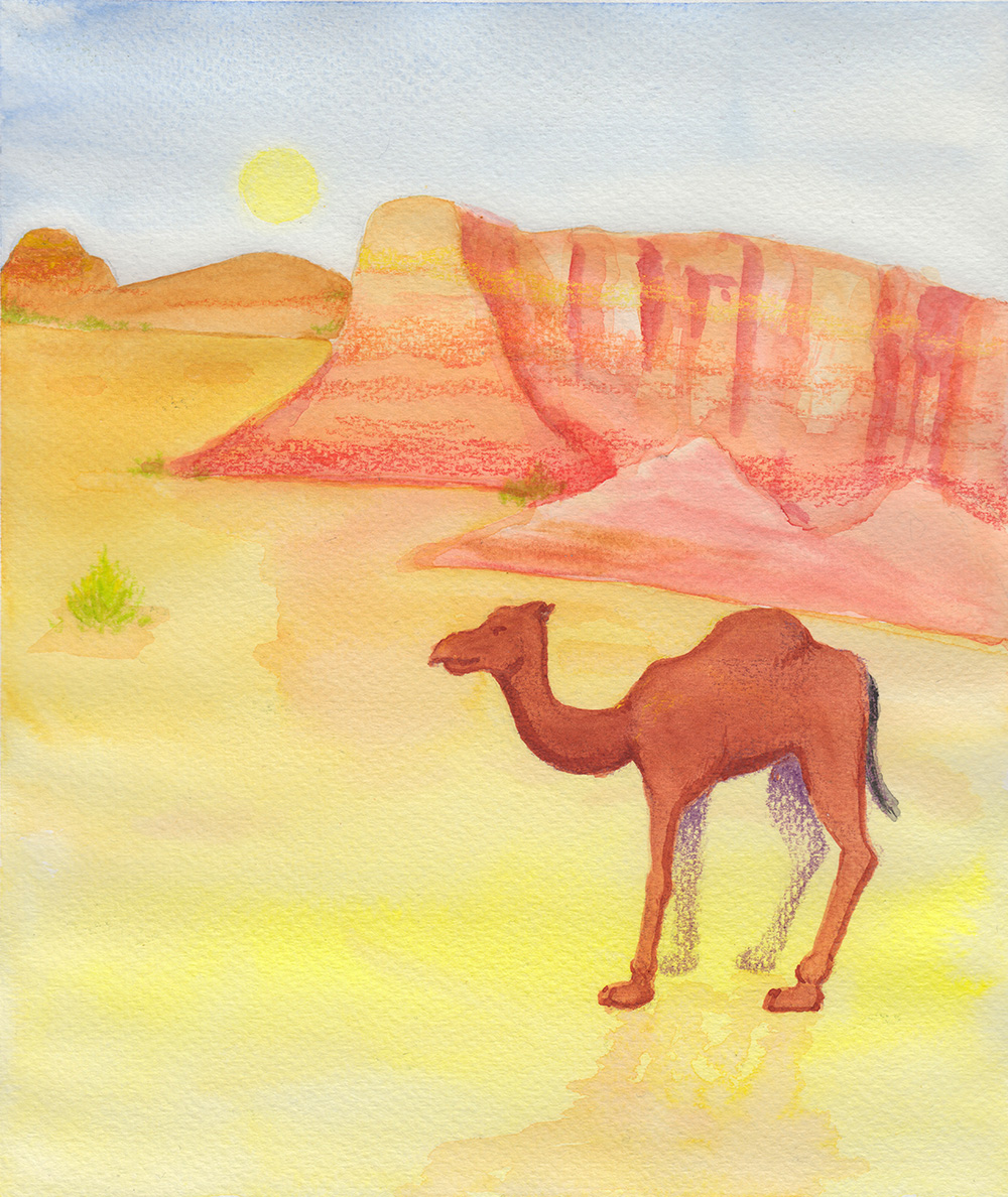 Imaginary Paint: Looking for an Oasis