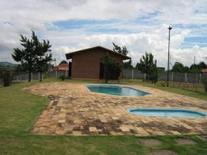 hotel-de-cachorros-piscina (Copy)