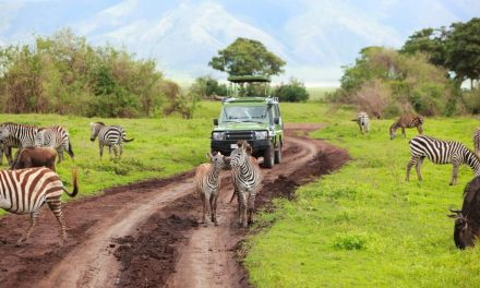 Best of Kenya and Tanzania Safari 12 days