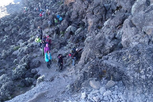 8 Days Kilimanjaro Climb Rongai Route