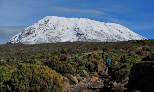 7 Day Kilimanjaro Machame Route