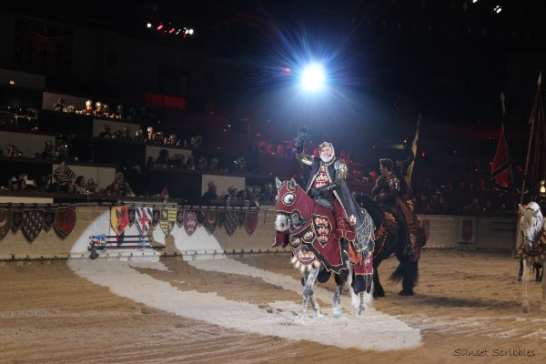 Medieval Times Dinner & Tournament – Chicago, IL