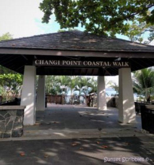 Singapore - Changi Point Coastal Walk