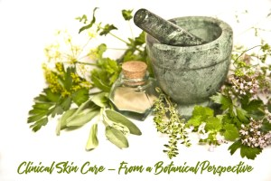 Clinica Skin Care - From a Botanical Perspective