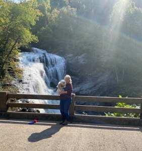 Bald Falls In Tellico