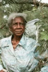 Emma Dupree, as well as household names like George Washington Carver.[1] Healers traditionally went by many titles, including root doctors, midwives, herbalists, nurses, and spiritual healers or conjurers. Many of these medicine men and women – the males typically holding the role of a spiritual healer and the females fulfilling the responsibility of herbalist or midwife – made their own medicines from the plants that grew near them.