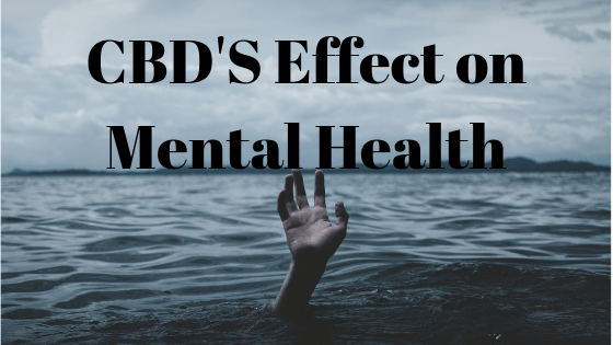 CBD's Effects on Mental Health