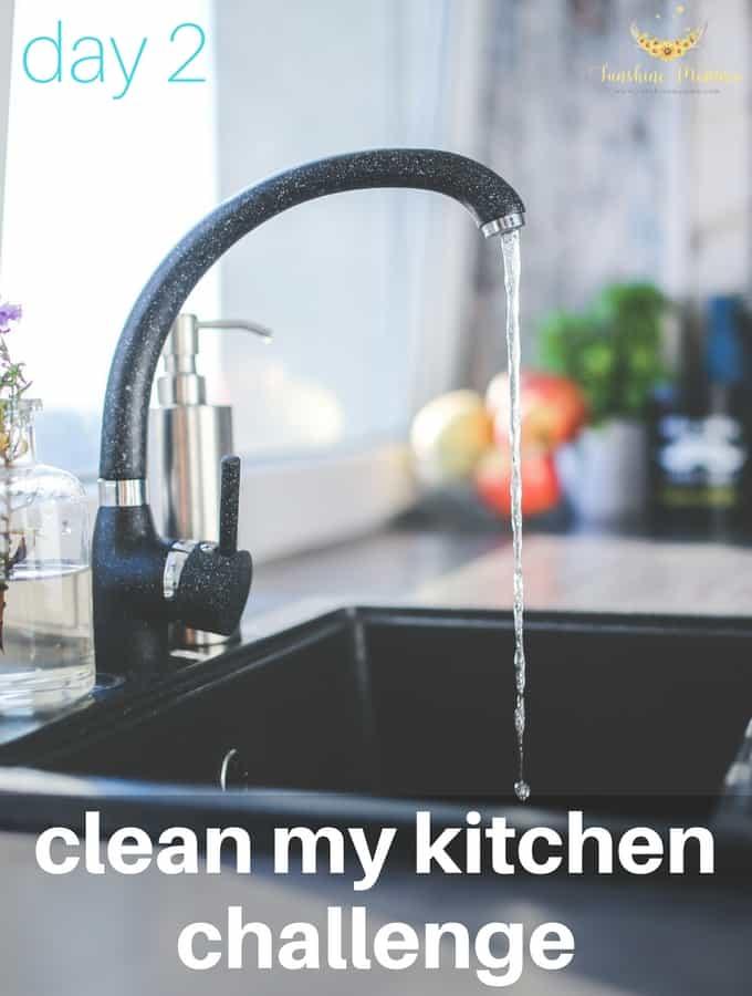Clean My Kitchen Challenge (Day 2)
