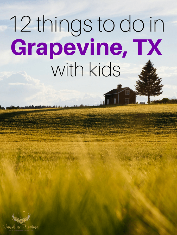 Things to do with kids in Grapevine, TX