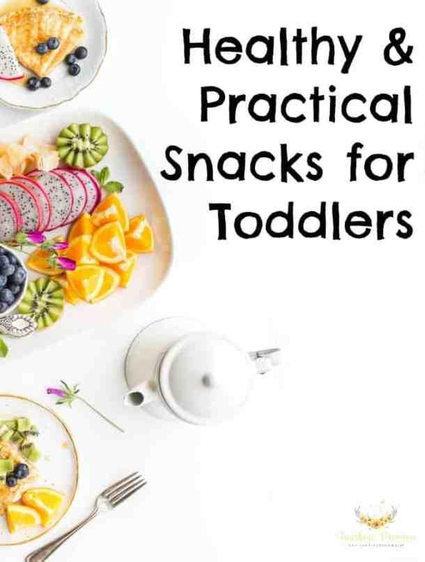 Healthy & Practical Toddler Snacks