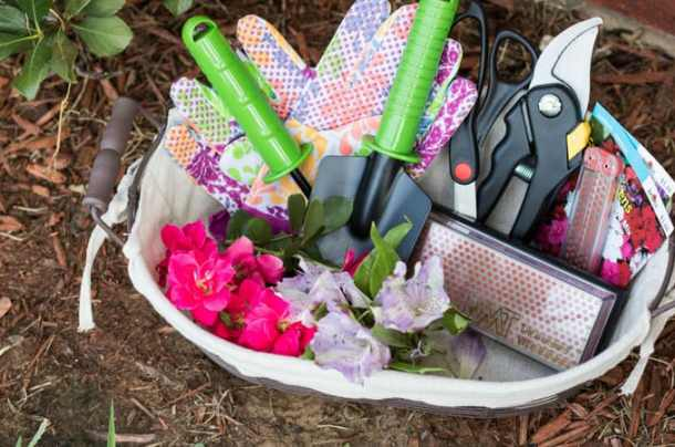 DIY Home Gardening Kit