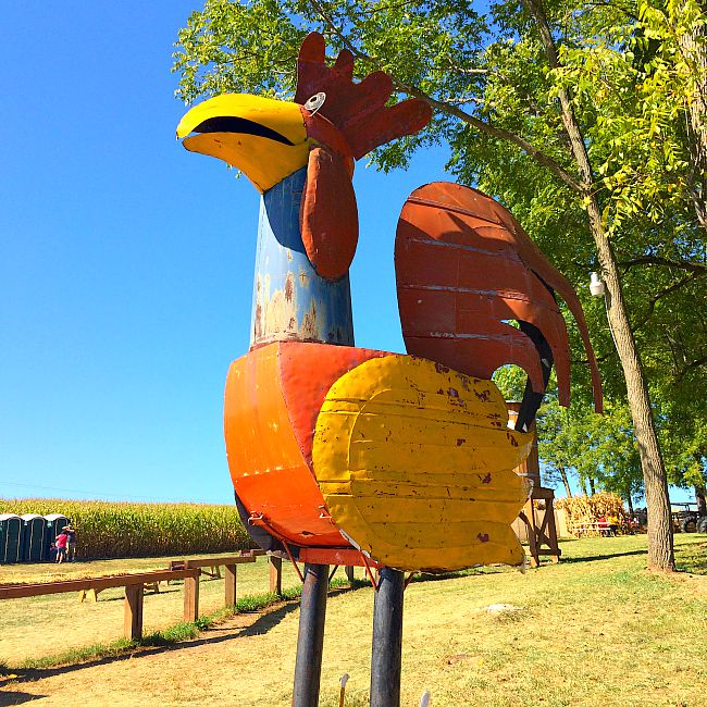 fun things to do with kids in maryland gaver farm