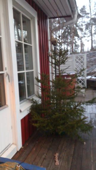 En begagnad julgran
