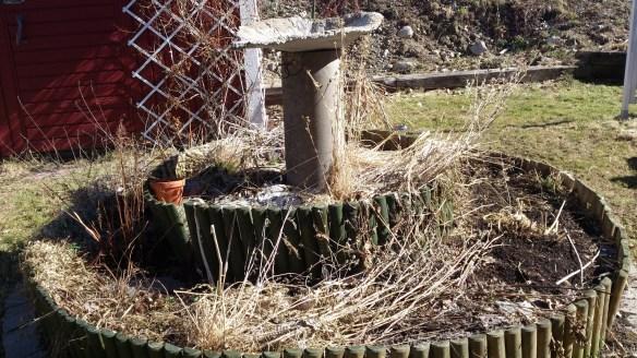 Rabarberblad är bra somf orm till  fina betongfat