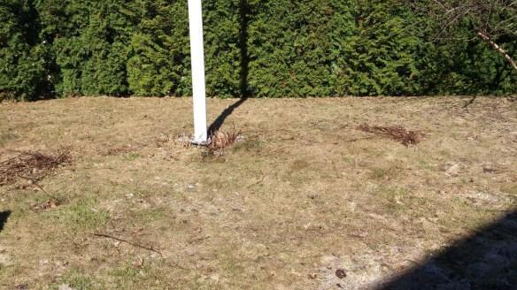 Gräsmattan behöver lite omsorg innan försommaren kommer på allvar