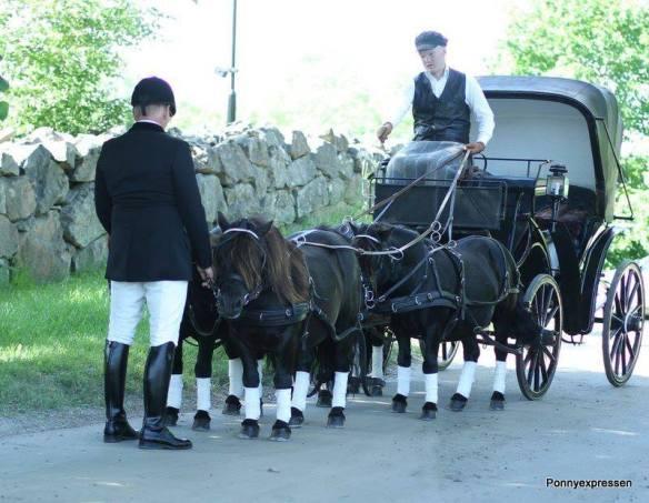 Bröllopskörning på gång