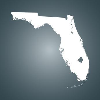 Florida Pest company