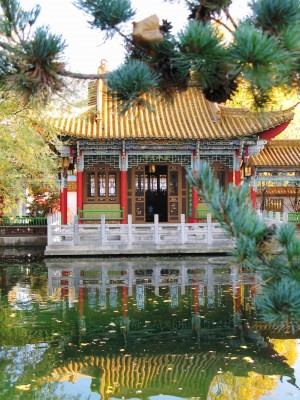 Chinese pagoda thinking learning growing success mystique