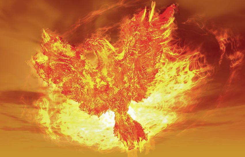 Phoenix Rising From Fire - Path to Get More Clients