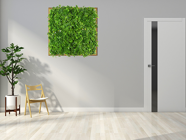 Indoor Green Walls for Homes