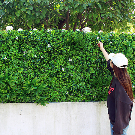 Outdoor Green Walls for Commercial Place and Project
