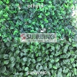 sparse-dense-conmparison-of-artificial-boxwood-sunwing