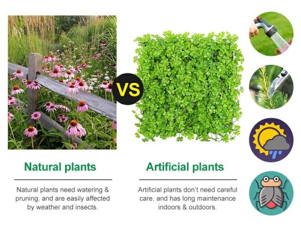 comparison between natural plants and artificial plants