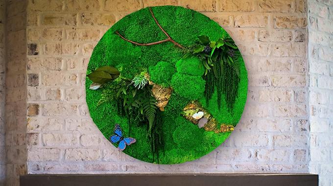DIY design for artificial framed moss