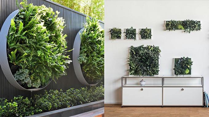 circular and rectangular shape of art framed plants wall
