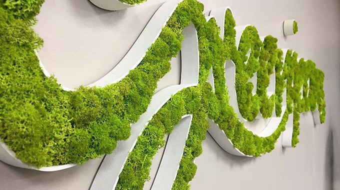 DIY creation of logo, slogan with moss