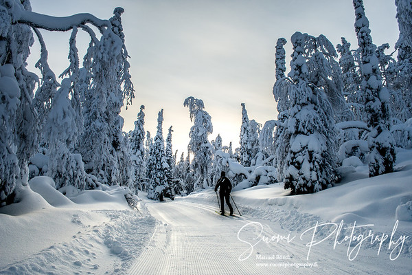 Winter 2016 Levi Lapland