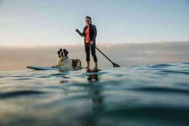 Man's best friend can also be your best SUP buddy.