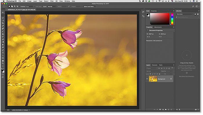 photoshop-default-essentials-workspace-1456489
