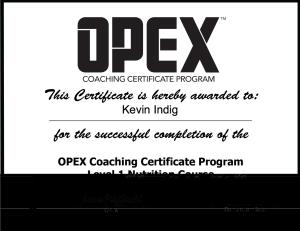 Mein Zertifikat als Ernährungsberater von OPEX