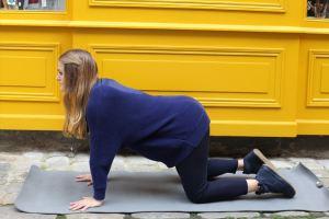 Posture yoga Chat -Marjarasana