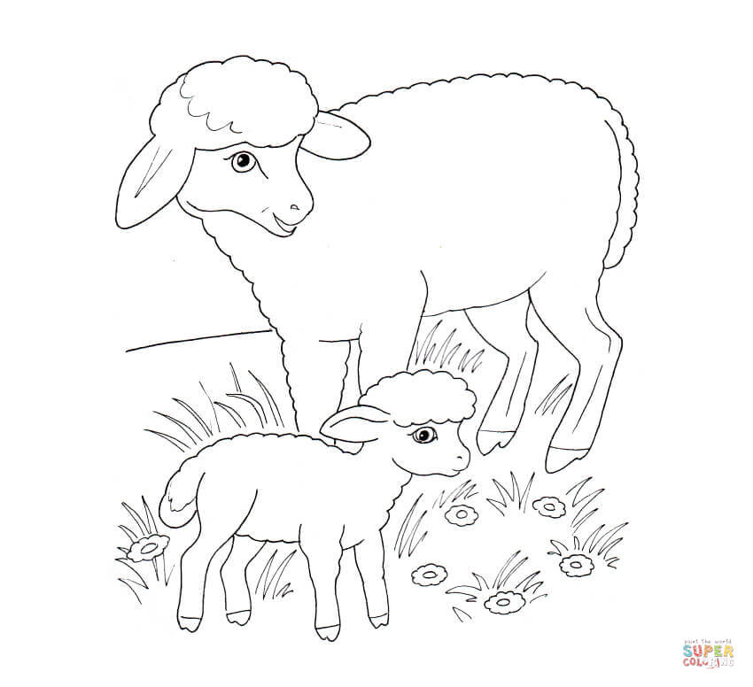 sheep mother and lamb coloring page free printable coloring pages